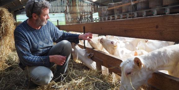 La Chèvrerie de l'Aber Benoît, producteur partenaire de La table Bretonne